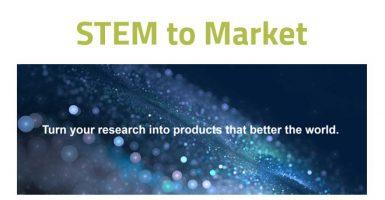 stem to market